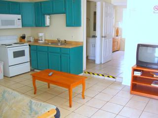 Oleander Beach Lodge #4 - South Padre Island vacation rentals