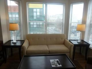 Lux Arlington 2BR 2 FULL BTH w/WiFi - Northern Virginia vacation rentals