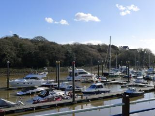 Pet Friendly Holiday Cottage - 25 Gaddarn Reach, Neyland Marina - Neyland vacation rentals