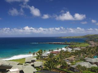 OCEAN VIEW Spectacular at KAPALUA RIDGE! - Kapalua vacation rentals