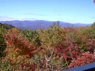 Beautiful NC mountain condo in gated community - Mars Hill vacation rentals