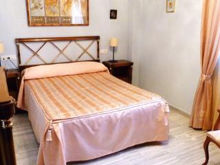 Close to Alhambra and Cathedral in Granada. - Province of Granada vacation rentals