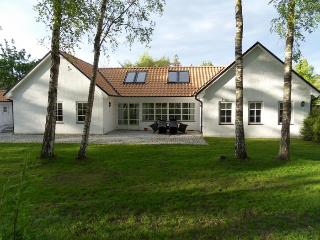 Beachhouse about 200 m to the white sand beach - Borrby vacation rentals