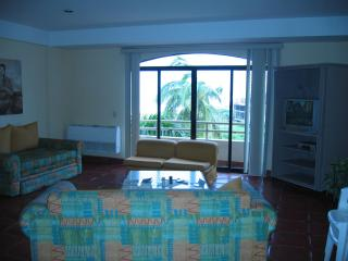Mazatlan beachfront condo - Mazatlan vacation rentals