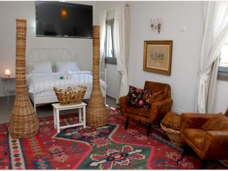 Superior Studio - Safed vacation rentals