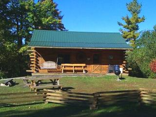 Hand-built creekside log cabin - Merrillan vacation rentals