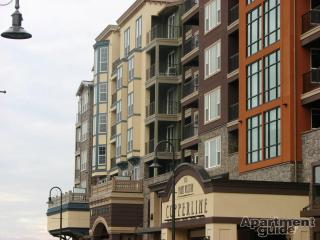 BRAND NEW 1BRM Waterfront SUITE 2 assigned parking - Tacoma vacation rentals