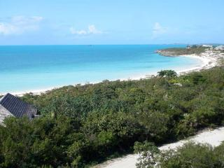 30 steps from Taylor Bay Beach, this house is strategically elevated on a beachside ridge. IE VBL - Turks and Caicos vacation rentals
