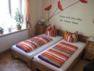 Vacation Apartment in Donauwörth - 431 sqft, central, bright, comfortable (# 5139) - Donauworth vacation rentals
