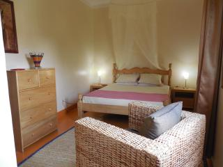 Newly Renovated One Bedroom Apartment - Uganda vacation rentals