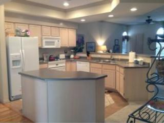 Luxarious Spacious Immaculate Romantic SpecialRate - Branson vacation rentals