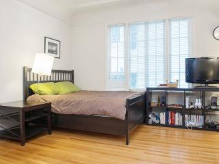 Bright 1 Bedroom Apartment in Mission District - San Francisco vacation rentals