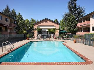 Clean and Lovely 1BR Apartment in Mountain View - Mountain View vacation rentals