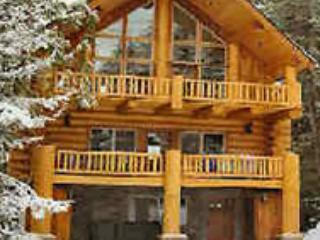 Skiing Bear Chalet - Government Camp vacation rentals
