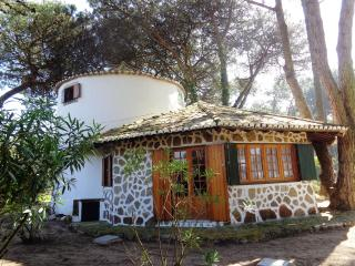 Lovely windmill in Sintra - Sintra vacation rentals