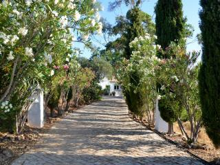 Beautiful mountain view 2 BR apart! - Tavira vacation rentals