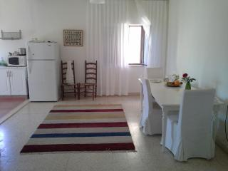A well designed 2/3 bedroom  apartment in a villa. - Jordan vacation rentals
