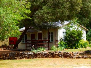~Cozy Riverfront Cottage #3~ - Coloma vacation rentals