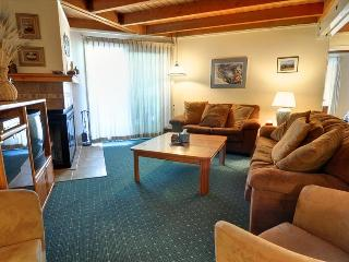 TREEHOUSE 101: 2 Bed/2 Bath, Perfect Condo for the Budget Minded Family, Includes Large Clubhouse, Hiking, Free Bus - Silverthorne vacation rentals