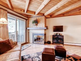 TREEHOUSE 202: 2 Bed/2 Bath, Fireplace, Great Clubhouse & Tennis Court, Mountain Views, Perfect for Families - Silverthorne vacation rentals