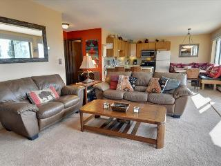 BUFFALO RIDGE 202: 2 Bed/2 Bath in Wildernest, Updated Kitchen, Carport, Great Views and Family Friendly Clubhouse - Silverthorne vacation rentals