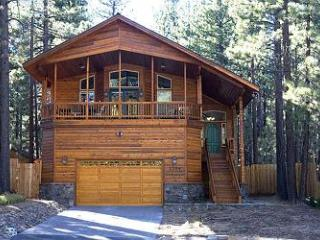 1164J Deluxe Mountain Cabin - South Lake Tahoe vacation rentals