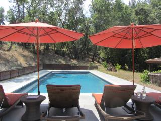 Kenwood Wine Country Retreat - Kenwood vacation rentals