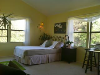Your Goleta/Santa Barbara Hideaway! - Goleta vacation rentals