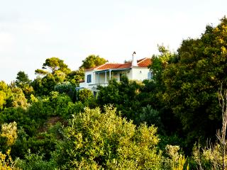 Natural Beauty Serenity & Relaxation are all Offered in this Pure Natural Environment! - Skiathos vacation rentals