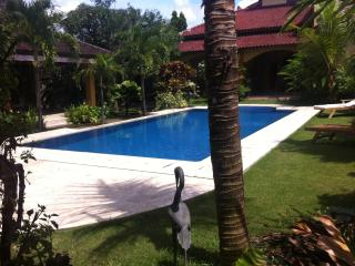 Ada Waktu, relaxing south of Yogyakarta - Java vacation rentals