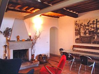 tastefully living over Luccas roofs - Lucca vacation rentals