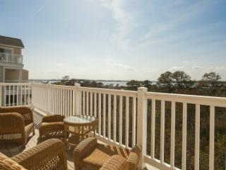Salt Meadows-Fenwick Island 122250 - Fenwick Island vacation rentals
