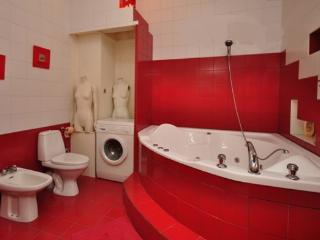 CENTRE-CITY COMFORT ECONOMY 2 BEDROOM APARTMENT - Saint Petersburg vacation rentals