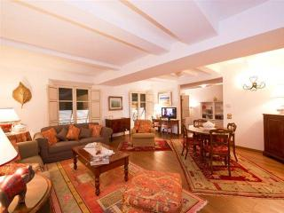 stylish large 3 bedrooms apartment in Lucca - Lucca vacation rentals