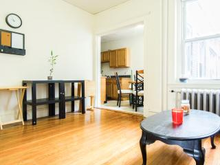 ONE BEDROOM BUT SLEEPS 5 PEOPLE - Greater Boston vacation rentals