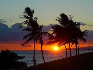 Deal! Oceanfront, vacation condo, fantastic view - Kapaa vacation rentals