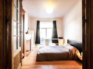 BRIGHT AND SPACIOUS 1 BEDROOM APT! - Brussels vacation rentals