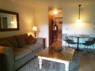Lovely 1BR condo at Topnotch Literally steps away from the Spa....treat YOURSELF! - Stowe Area vacation rentals
