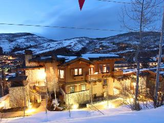 The Chalet at the Lodge at Vail #4 - Beaver Creek vacation rentals