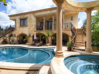 Luxury Olympus Estate - Los Angeles County vacation rentals