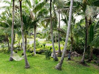 Lots of room and everything you need at Kapoho Nani - Puna District vacation rentals