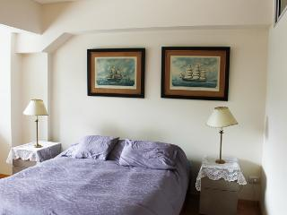 Beautifull apartment in Paraguay and Oro st, Palermo soho (G219PAS) - Buenos Aires vacation rentals
