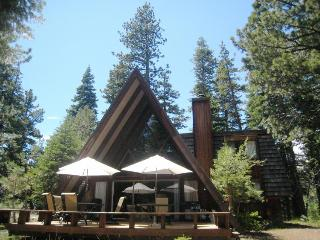Moana Circle Cabin - Homewood vacation rentals