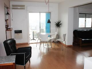 Bright and Cozy apartment in Santos Dumont and Amenabar st, Palermo Hollywood (G233PH) - Buenos Aires vacation rentals