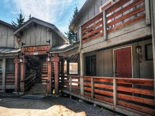Edelweiss #3 - NEW! Govt Camp, Fireplace, Dogs OK - Mount Hood vacation rentals