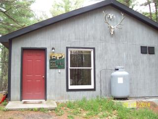 Comfortable Cabin in Pine Forest - Hudson vacation rentals