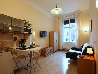 Tiny but cosy studio, only a few minutes walk from Charles Bridge - Prague vacation rentals