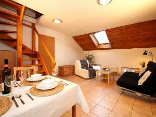 Spacious 3 BR  4min walk from Charles Bridge and Old Town Square - Prague vacation rentals