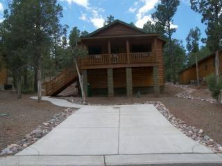 Bison Ridge Garita Cottage - Show Low vacation rentals