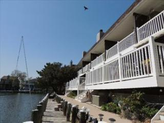 Baytree Townhouse 3 122288 - Ocean City Area vacation rentals
